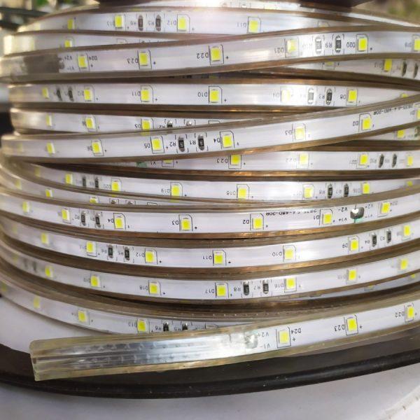 Стрічка св.діод. IP65 48W2835-220V 6W/m 6мм біла ціна за 1м